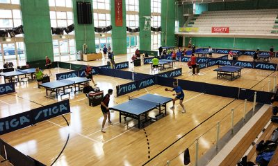 Ping Pong TT Star Series